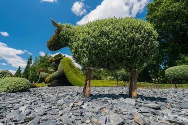 jardin-botanico12