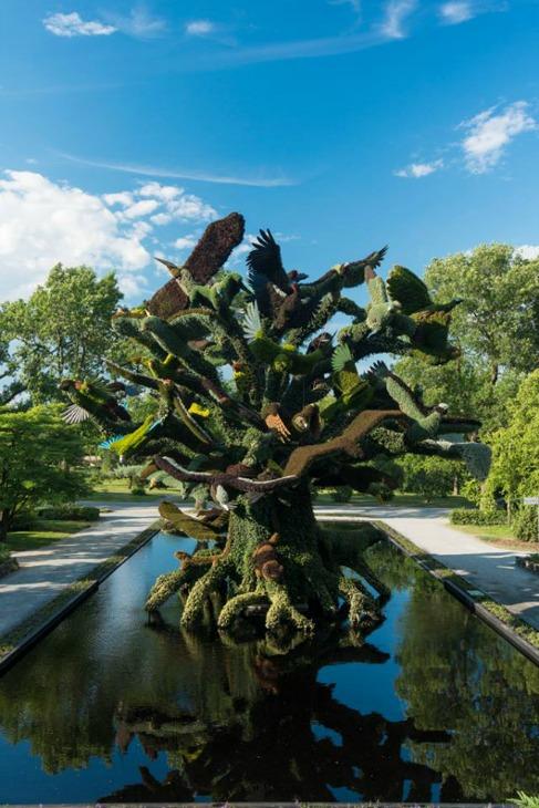 jardin-botanico3