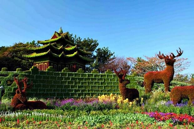 jardin-botanico9